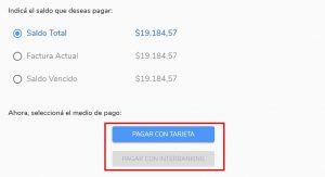 formas de pago online factura edenor digital